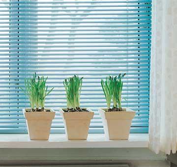 jalousien nach ma g nstig online kaufen sundiscount. Black Bedroom Furniture Sets. Home Design Ideas